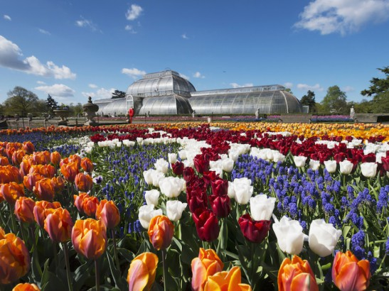 10 Most beautiful gardens in the world to see in your lifetime