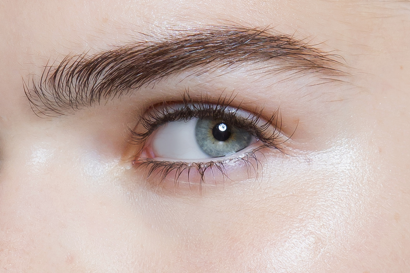 Brow Gels The Best Products On The Market Now